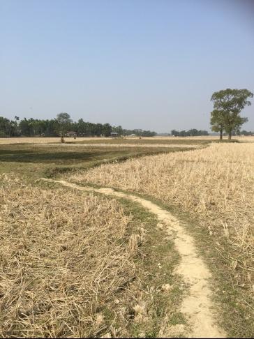 Path to walk: kailashahar,tripura