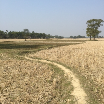 Path to walk: kailashahar,tripura